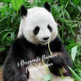 Bamboe Servies