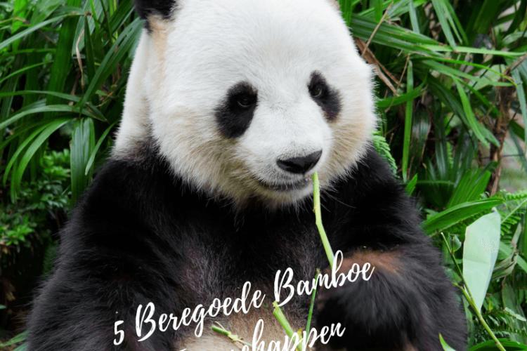 Bamboe Eigenschappen