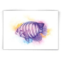 Kaart Angel Fish - Made by Marcelle bij FairtradeUpgrade
