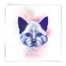 Kaart vierkant Kitten Made by Marcelle bij FairtradeUpgrade